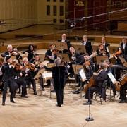 arata_yumi_and_amadeus_chamber_orchestra.jpg